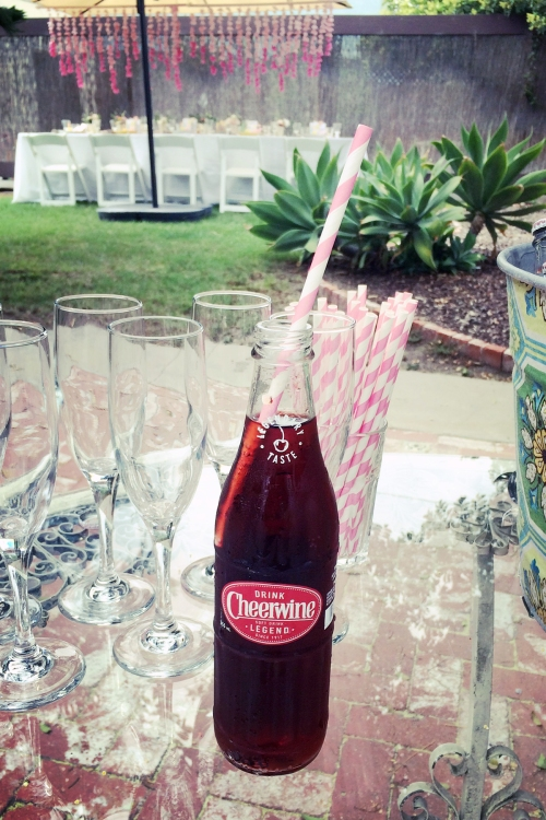 Our non-alcoholic beverage was the southern staple, Cheerwine. If you haven't had it, I'm SO sorry!
